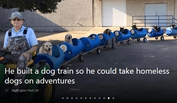 dog_train